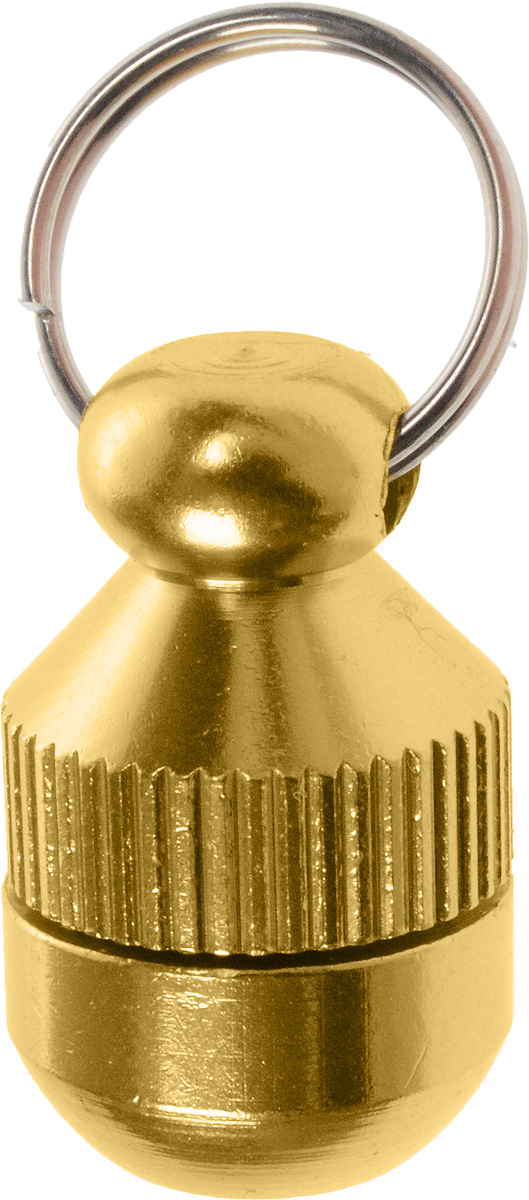Адресник-капсула Vila, цвет: золотой, 2 см0120710Адресник-капсула Vila является одним из способов идентификации животных. Корпус изделия выполнен из прочного алюминия. Внутрь капсулы вкладывается информация о животном и владельце, а также она служит украшением к ошейнику.