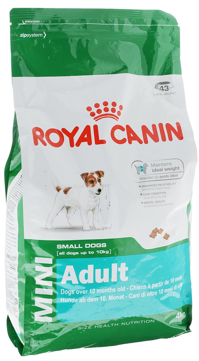 Корм сухой Royal Canin Mini Adult, для собак мелких размеров с 10 месяцев до 8 лет, 4 кг0120710Корм сухой Royal Canin Mini Adult - полнорационный сухой корм для поддержания прекрасной физической формы собак мелких размеров (вес взрослой собаки до 10 кг) с 10 месяцев до 8 лет.Поддержание идеального веса.L-карнитин стимулирует метаболизм жиров в организме. Удовлетворяет высокие энергетические потребности собак мелких размеров благодаря точно рассчитанной энергоемкости рациона (3737 ккал/кг) и сбалансированному содержанию белка (26%).Улучшенные вкусовые качества.Стимулирует аппетит благодаря своим уникальным свойствам. Текстура, форма и размер крокет специально разработаны для облегчения захвата корма. Тщательно отобранные ингредиенты, натуральные ароматизаторы и современная упаковка, сохраняющая свежесть и аромат продукта, гарантируют его превосходный вкус. Здоровая шерсть.Питает шерсть благодаря включению в состав корма серосодержащих аминокислот (метионин и цистин), жирных кислот Омега 6 и витамина А. Здоровье зубов.Помогает замедлить образование зубного налета благодаря полифосфату натрия, который связывает кальций, содержащийся в слюне. Состав: дегидратированные белки животного происхождения (птицы), кукуруза, кукурузная мука, животные жиры, кукурузная клейковина, изолят растительных белков, пшеница, гидролизат белков животного происхождения, рис, свекольный жом, минеральные вещества, рыбий жир, дрожжи, соевое масло, фруктоолигосахариды.Добавки (в 1 кг): питательные добавки: Витамин А: 22500 ME, Витамин D3: 1000 ME, Железо: 42 мг, Йод: 4,2 мг, Марганец: 55 мг, Цинк: 164 мг, Селен: 0,11 мг, L-картнитин: 50 мг. - Консервант: сорбат калия, Антиокислители: пропилгаллат, БГА.Товар сертифицирован.