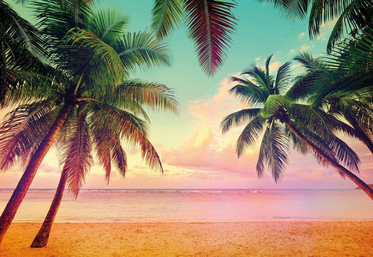 Фотообои Komar Майами, 3,68 х 2,54 мP-046Бумажные фотообои известного бренда Komar позволят создать неповторимый облик помещения, в котором они размещены. Фотообои наносятся на стены тем же способом, что и обычные обои. Благодаря превосходной печати и высококачественной основе такие обои будут радовать вас долгое время. Фотообои снова вошли в нашу жизнь, став модным направлением декорирования интерьера. Выбрав правильную фактуру и сюжет изображения можно добиться невероятного эффекта живого присутствия.Ширина рулона: 3,68 м.Высота полотна: 2,54 м. Клей в комплекте.