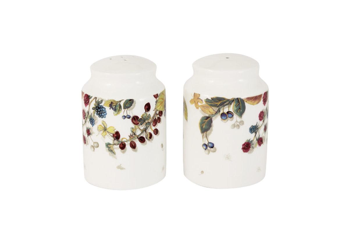 Набор для специй Imari Магнолия, 2 предмета115510Набор для специй Imari Магнолия, изготовленный из высококачественной керамики белого цвета, состоит из солонки и перечницы. Емкости оформлены изображением цветов. Солонка и перечница легки в использовании: стоит только перевернуть емкости, и вы с легкостью сможете поперчить или добавить соль по вкусу в любое блюдо. Такой набор для специй украсит стол и послужит отличным подарком для ваших друзей.Можно мыть в посудомоечной машине.