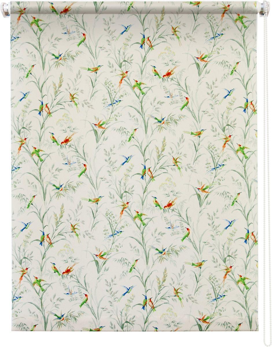 Штора рулонная Уют Парадиз, цвет: белый, 100 х 175 см1004900000360Штора рулонная Уют Парадиз выполнена из прочного полиэстера с обработкой специальным составом, отталкивающим пыль. Ткань не выцветает, обладает отличной цветоустойчивостью и хорошей светонепроницаемостью. Изделие оформлено изысканным рисунком в виде птичек, сидящих на ветках, отлично подойдет для спальни, гостиной, кухни. Штора закрывает не весь оконный проем, а непосредственно само стекло и может фиксироваться в любом положении. Она быстро убирается и надежно защищает от посторонних взглядов. Компактность помогает сэкономить пространство. Универсальная конструкция позволяет крепить штору на раму без сверления, также можно монтировать на стену, потолок, створки, в проем, ниши, на деревянные или пластиковые рамы. В комплект входят регулируемые установочные кронштейны и набор для боковой фиксации шторы. Возможна установка с управлением цепочкой как справа, так и слева. Изделие при желании можно самостоятельно уменьшить. Такая штора станет прекрасным элементом декора окна и гармонично впишется в интерьер любого помещения.