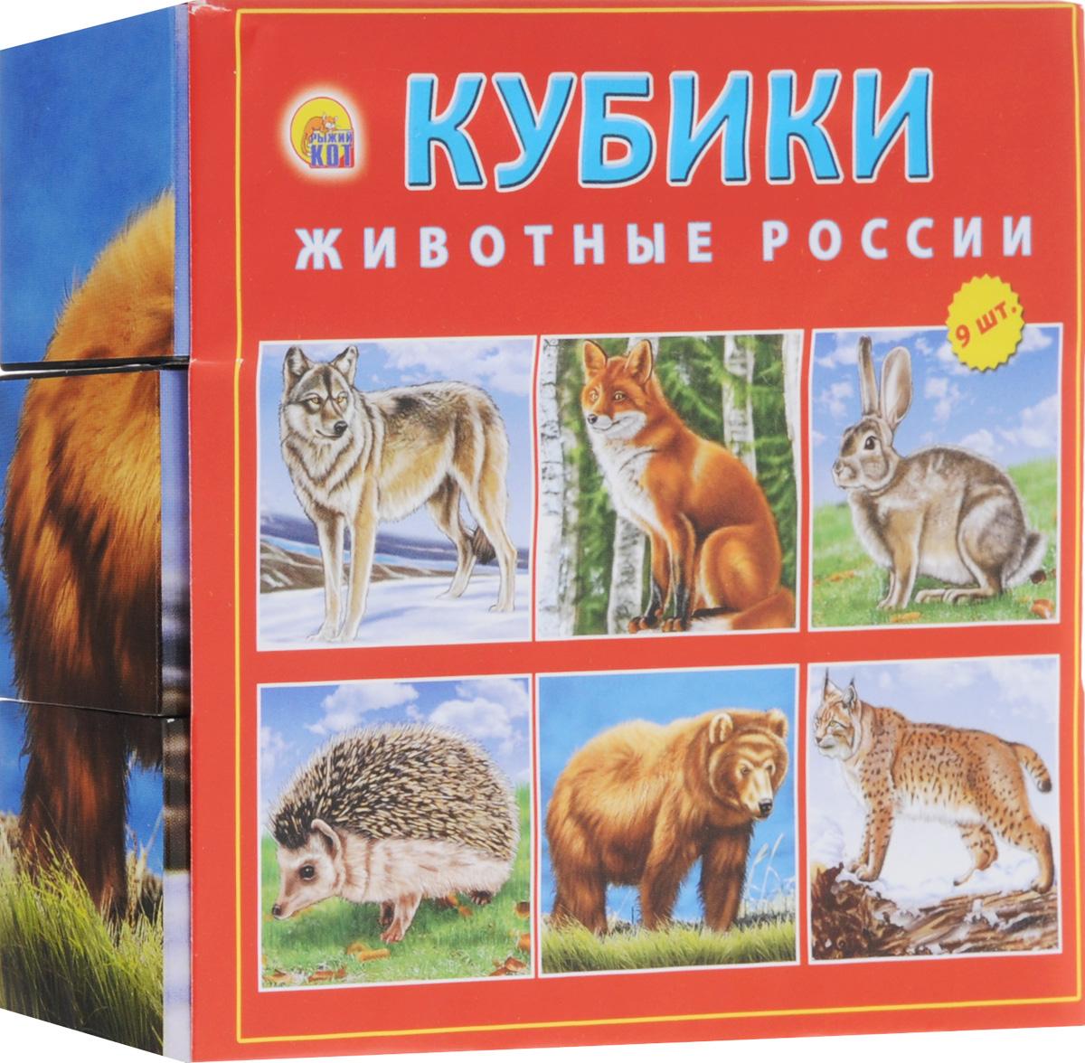 Рыжий Кот Кубики Животные России
