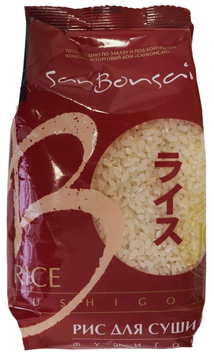 SanBonsai Fushigon рис для суши, 450 г0120710В странах Юго-Восточной Азии и Китае рис является национальным продуктом питания. Основой сорт риса, который там выращивают и потребляют - фушигон. Особенность его приготовления заключается в том, что рис варят на пустой воде без добавления соли, специй или масла. И только при подаче на стол или готовке блюда с использованием риса, добавляют различные соусы на основе сои и, как правило, кунжут. Как сложный углевод, рис дает большое количество энергии на долгий промежуток времени. Рис для суши SanBonsai Fushigon Экстра сорта фушигон отличается повышенной клейкостью в вареном виде, что позволяет с легкостью придать ему желаемую форму. Фушигон используют не только для приготовления роллов и суши, но и для всех блюд Юго-Восточной Азии и Китая.