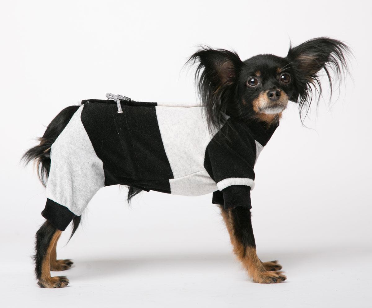 Комбинезон для собак Yoriki Велюр, для мальчика, цвет: черный, серый. Размер M0120710Комбинезон для собак Yoriki Велюр отлично подойдет для прогулок в прохладную погоду. Застегивается комбинезон на спине на кнопки и дополнительно затягивается на талии шнурком. Благодаря такому комбинезону вашему питомцу будет комфортно наслаждаться прогулкой.Обхват шеи: 23-28 см.Длина по спинке: 25 см.Объем груди: 35-42 см.