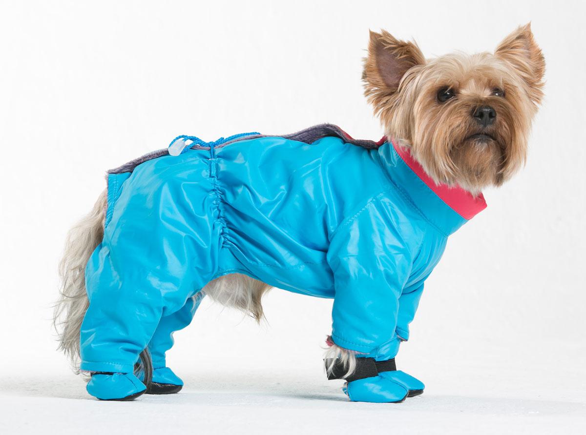 Комбинезон для собак Yoriki Флирт, для мальчика, цвет: голубой. Размер SMOS-026-SКомбинезон для собак Yoriki Флирт отлично подойдет для прогулок в прохладную погоду осенью или весной. Верх комбинезона выполнен из водоотталкивающего полиэстера. Подкладка изготовлена из искусственного меха. Застегивается комбинезон на спине на кнопки и дополнительно на пояснице затягивается шнурком. Благодаря такому комбинезону вашему питомцу будет комфортно наслаждаться прогулкой.Обхват шеи: 20-24 см.Длина по спинке: 21 см.Объем груди: 29-36 см.