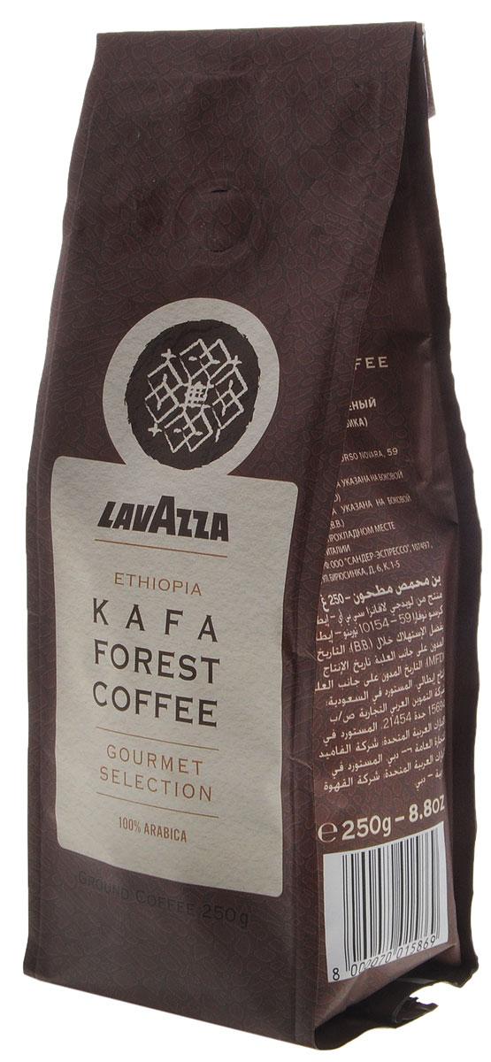 Lavazza Kafa Forest Coffee кофе молотый, 250 г0120710Высококачественный кофе Lavazza Kafa Forest Coffee обладает изысканным благородным вкусом и интенсивным ароматическим букетом. В его мягком послевкусии звучат сладкие нотки цветочного меда и спелых фиников. Рекомендуется для приготовления в эспрессо-машине, фильтр-кофеварке, турке.