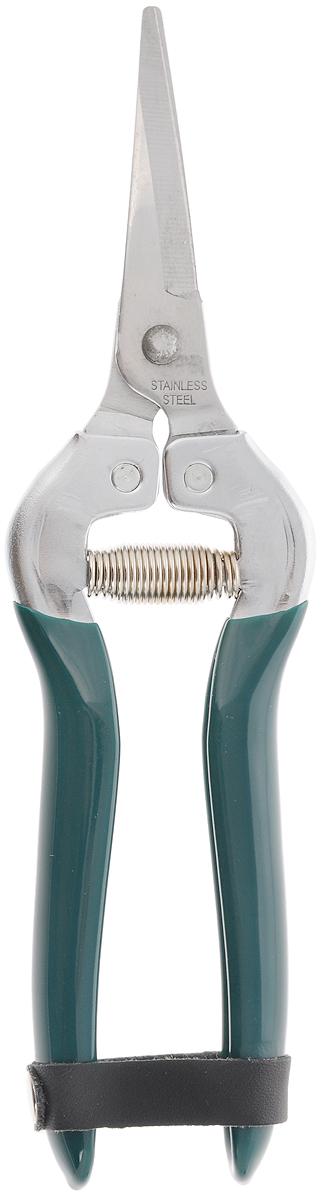 Ножницы садовые Raco, длина 19 смK100Садовые ножницы Raco используются для среза цветов и сбора плодов на плодоножке. Также могут быть применимы для работ дома и в мастерской, так как отлично режут тонкие изделия из алюминия, меди, жести, резины, кожи, а также провода и ковровые изделия. Они оснащены эргономичными рукоятками с виниловым покрытием, петлей безопасности и пружиной для более удобного использования. Лезвия инструмента изготовлены из высококачественной нержавеющей хромированной стали.