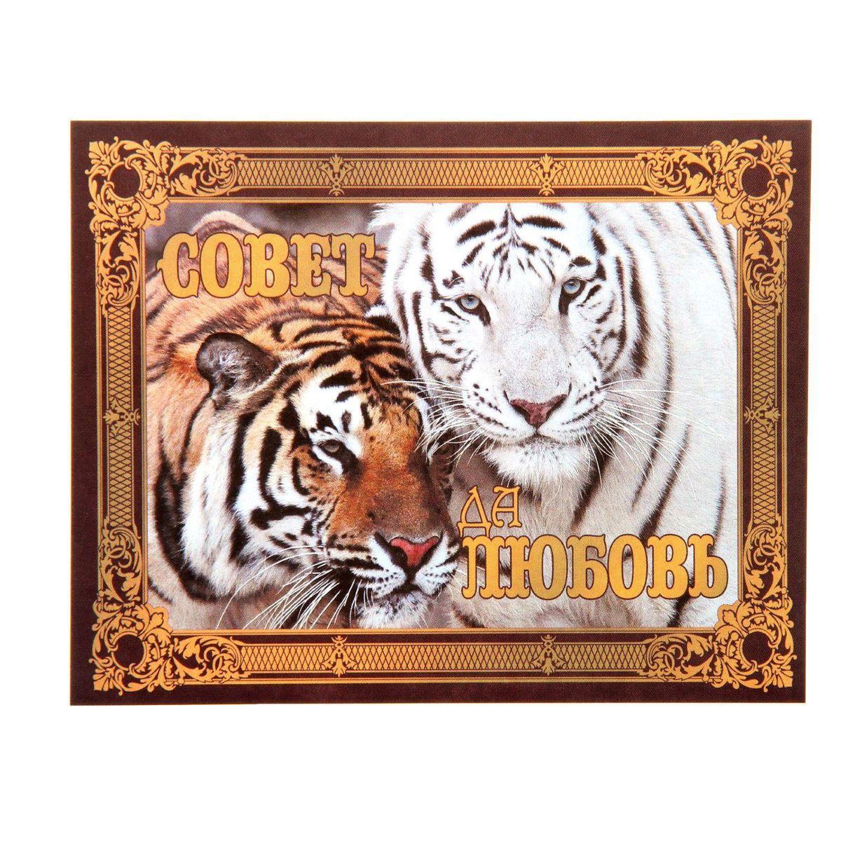 Наклейка на бутылку Sima-land Совет да любовь! Тигры, 9,4 х 11,7 смNLED-454-9W-BKНаклейка Sima-land Совет да любовь! Тигры, выполненная из бумаги, станет отличным аксессуаром, который преобразит обычную бутылку в праздничную и придаст вам особое настроение.