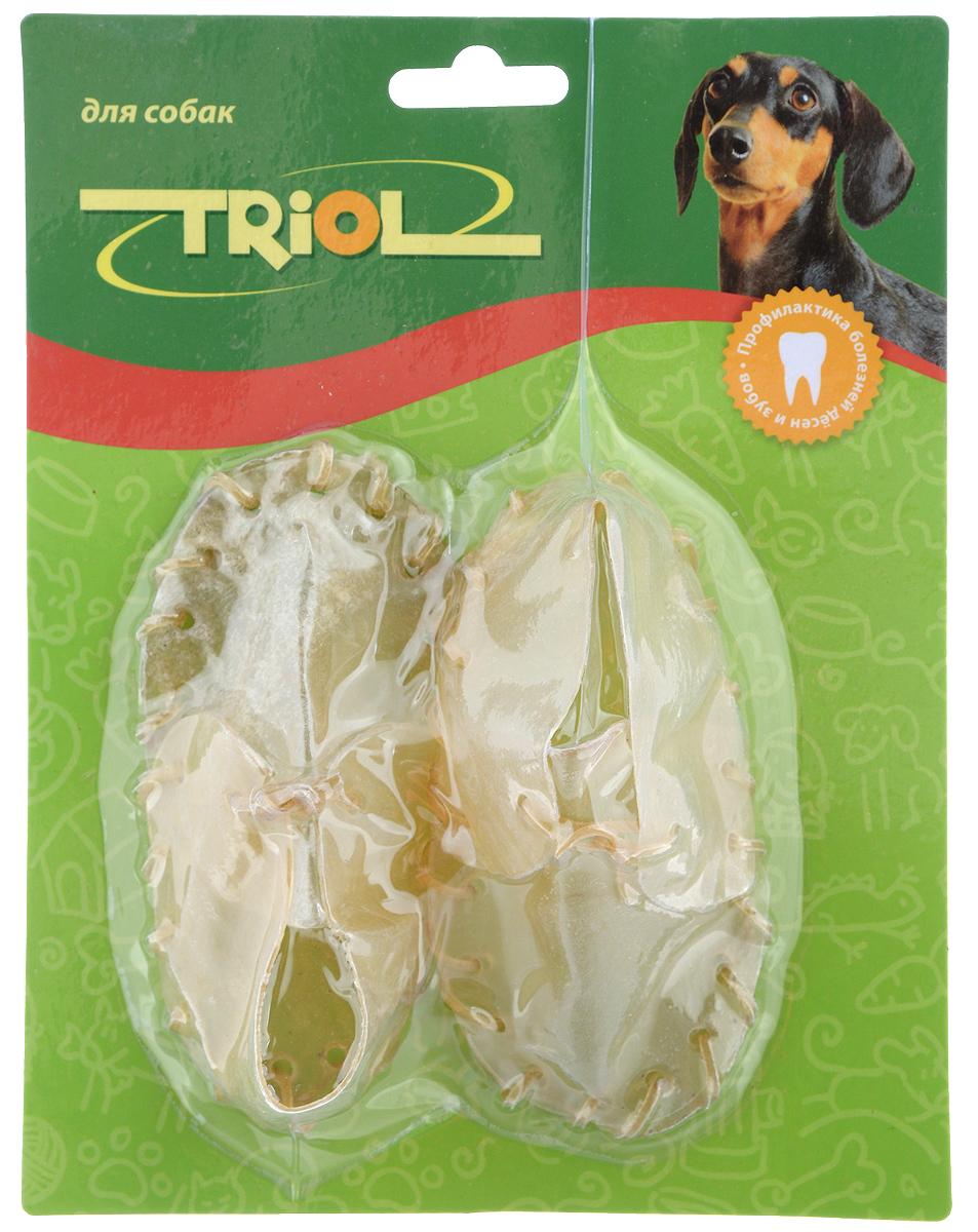 Лакомство для собак Triol Ботинок, средний, 2 шт0120710Лакомство Triol Ботинок - это увлекательное и полезное лакомство, которое ориентировано на то, чтобы способствовать укреплению и тренировкечелюстей собаки, сохранять зубы крепкими и сильными. Кроме того, оно может стать интересной и очень увлекающей игрушкой для вашего любимца. Изготовленное из сублимированных жил лакомство поможет избавиться животному от вредоносного зубного налета, который является источником инфекций и заболеваний ротовой полости.В упаковке два ботинка длиной 13 см.Товар сертифицирован.