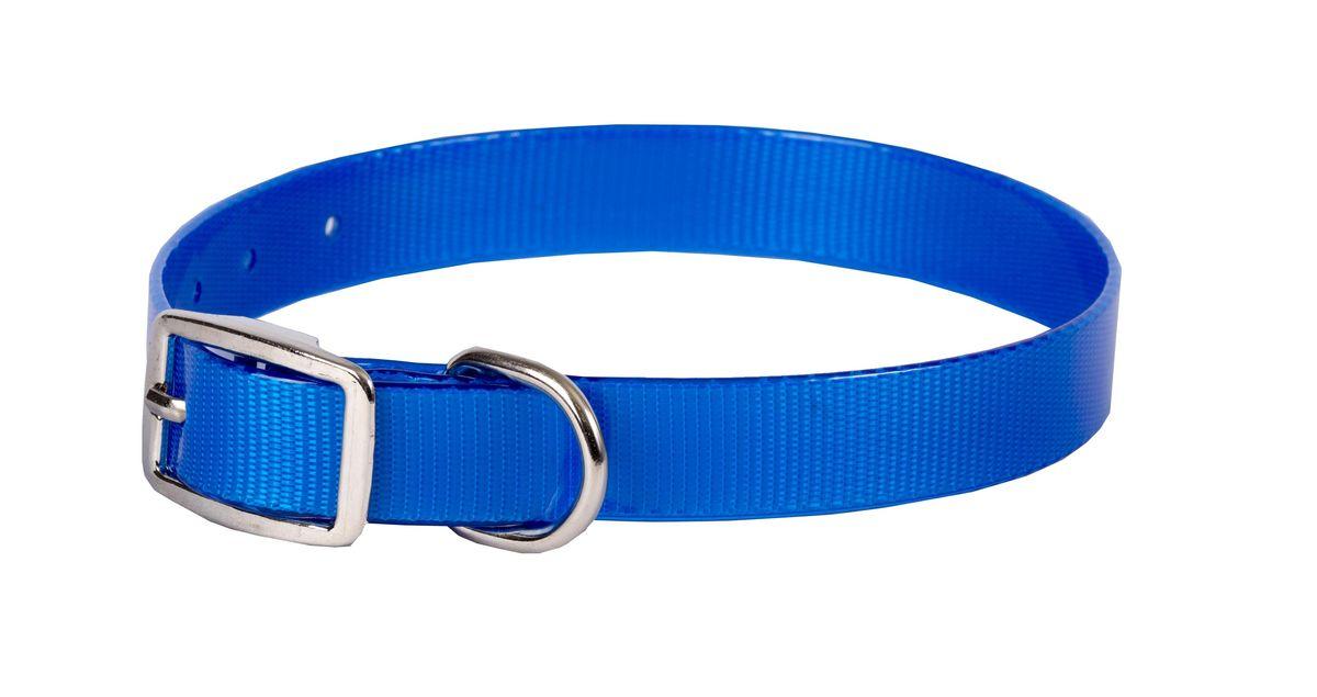 Ошейник для собак Каскад Синтетик, цвет: синий, ширина 1,5 см, обхват шеи 26-35 смHB500IОшейник для собак Каскад Синтетик изготовлен из высокотехнологичного биотана (нейлон, термопластичный полиуретан). Сверхпрочный ошейник удобен и практичен в использовании, не выгорает, устойчив к влажности, не рвется и не деформируется. Размер ошейника регулируется с помощью металлической пряжки, которая фиксируется на одном из 7 отверстий изделия. Яркий ошейник Каскад Синтетик идеально подойдет для активных собак, для прогулок на природе и охоты.Минимальный обхват шеи: 26 см. Максимальный обхват шеи: 35 см. Ширина: 1,5 см.