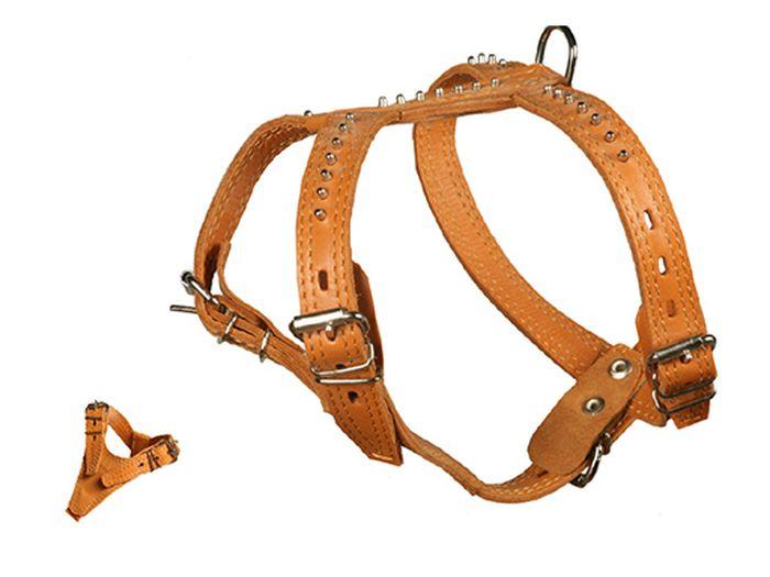 Шлейка Каскад Элита, двойная, с шипами-еж, ширина 1,5 см, цвет: коричневый0120710Шлейка кожаная Элита двойная с шипами-ёж шир.15 мм,грудь 31-36,шея 19-32