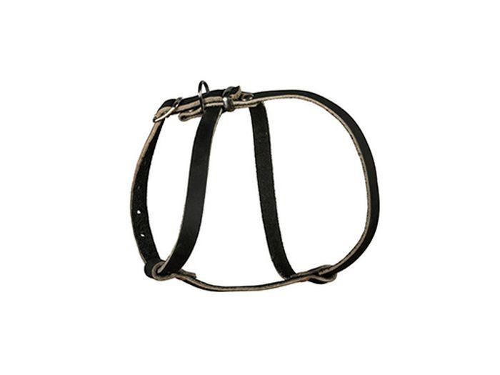 Шлейка для собак Каскад Восьмерка, малая, цвет: черный, ширина 1,5 см0120710Шлейка Каскад Восьмерка, изготовленная из натуральной кожи, подходит для собак мелких пород и кошек. Крепкие металлические элементы делают ее надежной и долговечной. Шлейка - это альтернатива ошейнику. Правильно подобранная шлейка не стесняет движения питомца, не натирает кожу, поэтому животное чувствует себя в ней уверенно и комфортно. Размер регулируется при помощи пряжки. Металлическое кольцо предназначено для крепления поводка.Изделие отличается высоким качеством, удобством и универсальностью.Обхват шеи: 26-33 см. Обхват груди: 33-45 см.Ширина шлейки: 1,5 см.