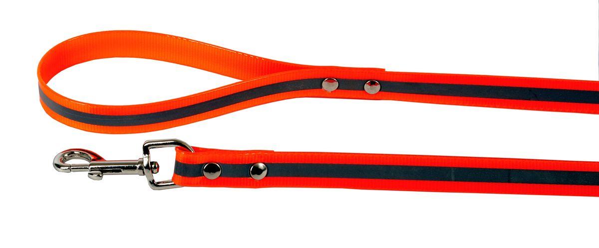 Поводок для собак Каскад Синтетик, со светоотражающей полосой, цвет: оранжевый, ширина 2 см, длина 2 м0120710Поводок для собак Каскад Синтетик изготовлен извысокотехнологичного биотана (нейлон, термопластичный полиуретан) и снабжен металлическим карабином. Изделие имеет светоотражающую полоску. Поводок отличается не только исключительной надежностью и удобством, но и ярким дизайном. Он идеально подойдет для активных собак, для прогулок на природе и охоты в темное время суток. Поводок - необходимый аксессуар для собаки. Ведь в опасных ситуациях именно он способен спасти жизнь вашему любимому питомцу. Длина поводка: 2 м.Ширина поводка: 2 см.