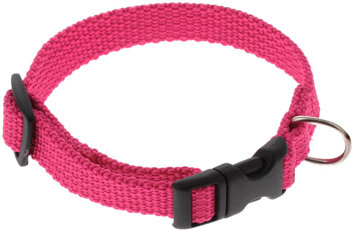 Ошейник Аркон Капрон, цвет: розовый, ширина 1,5 см, длина 24-38 см07004Ошейник Аркон Капрон изготовлен из высококачественного цветного капрона и закрывается на пластиковую защелку. Металлическое кольцо предназначено для крепления поводка. Изделие отличается не только высоким качеством, удобством и универсальностью, но и привлекательным современным дизайном.Иногда нужно ограничивать свободу своего четвероногого друга, чтобы защитить его или себя от неприятностей на прогулке. Длина ошейника: 24-38 см. Ширина ошейника: 1,5 см.