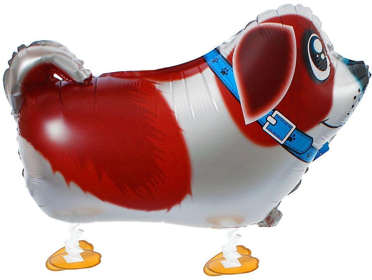 Sima-land Воздушный шарик Собачка в ошейнике ХОД 18