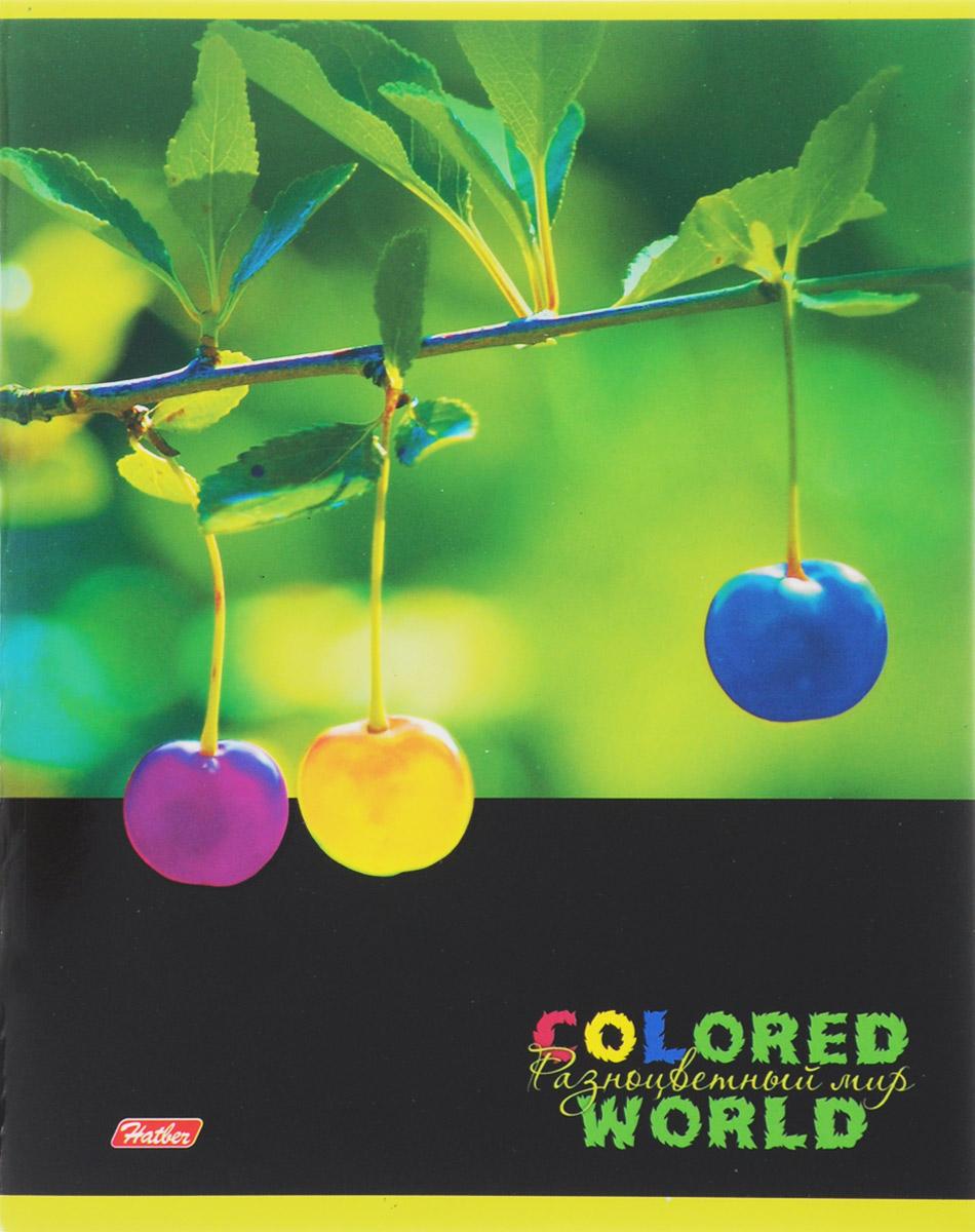 Hatber Тетрадь Разноцветный мир 96 листов в клетку 1455972523WDТетрадь Hatber Разноцветный мир отлично подойдет для старших школьников, студентов и офисных работников.Обложка, выполненная из плотного картона, позволит сохранить тетрадь в аккуратном состоянии на протяжении всего времени использования. Лицевая сторона оформлена изображением удивительных по красоте растений, разукрашенных в яркие и не свойственные природе причудливые цвета.Внутренний блок тетради, соединенный двумя металлическими скрепками, состоит из 96 листов белой бумаги. Стандартная линовка в клетку голубого цвета дополнена полями, совпадающими с лицевой и оборотной стороны листа.