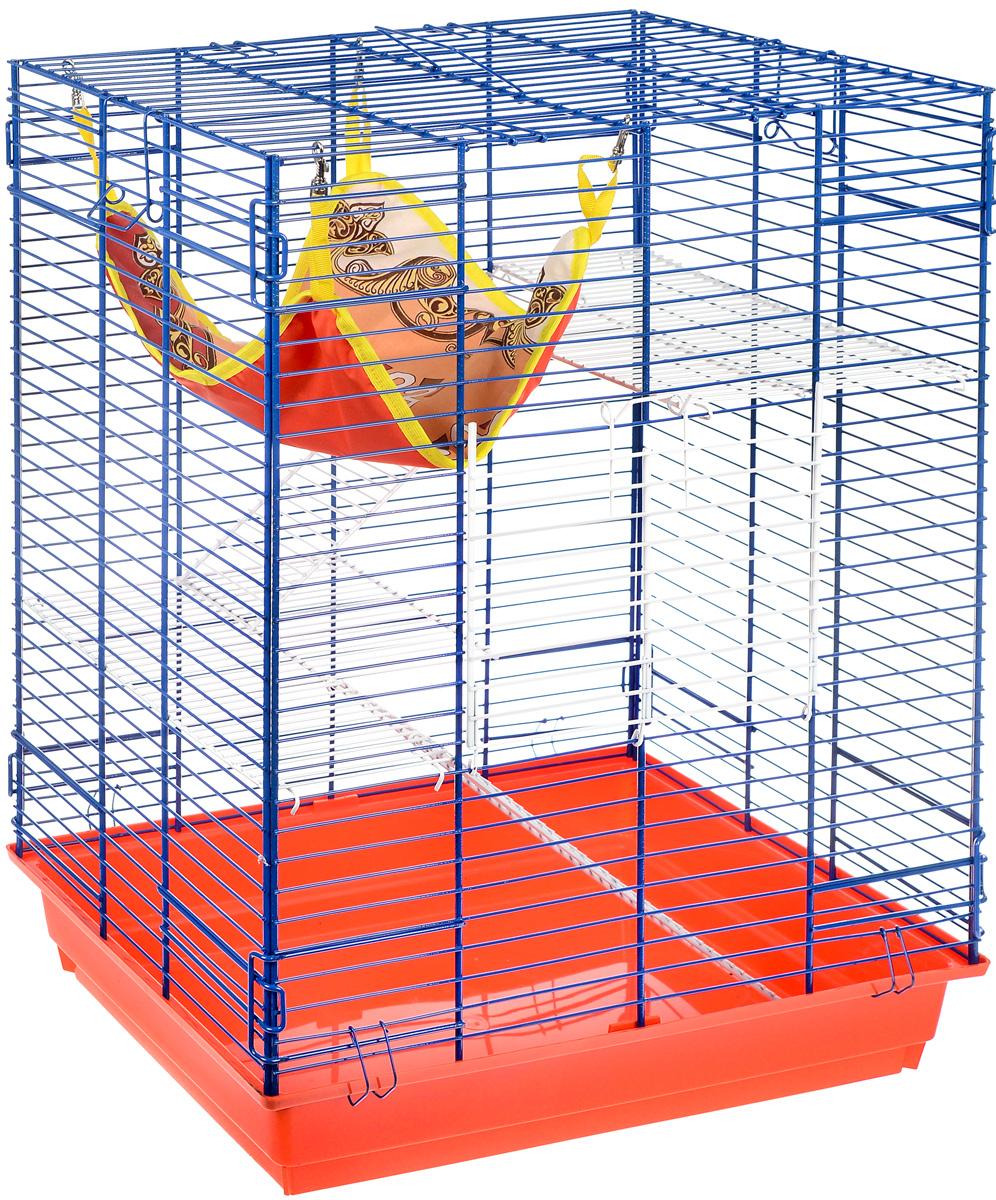 Клетка для шиншилл и хорьков ЗооМарк, цвет: красный поддон, синяя решетка, белые этажи, 59 х 41 х 79 см0120710Клетка ЗооМарк, выполненная из полипропилена и металла, подходит для шиншилл и хорьков. Большая клетка оборудована длинными лестницами и гамаком. Изделие имеет яркий поддон, удобно в использовании и легко чистится. Сверху имеется ручка для переноски. Такая клетка станет уединенным личным пространством и уютным домиком для грызуна.