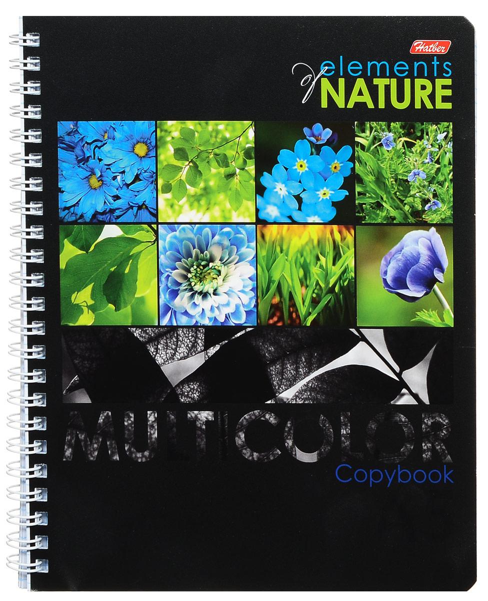 Hatber Тетрадь Multicolor 96 листов в клетку цвет голубой зеленый формат А572523WDТетрадь Hatber Multicolor незаменима для старшеклассников и студентов.Обложка тетради с закругленными углами выполнена из картона, что позволит сохранить тетрадь в аккуратном состоянии на протяжении всего времени использования. Обложка украшена изображениями растений.Внутренний блок тетради на металлическом гребне состоит из 96 листов белой бумаги с линовкой в клетку синего цвета без полей.