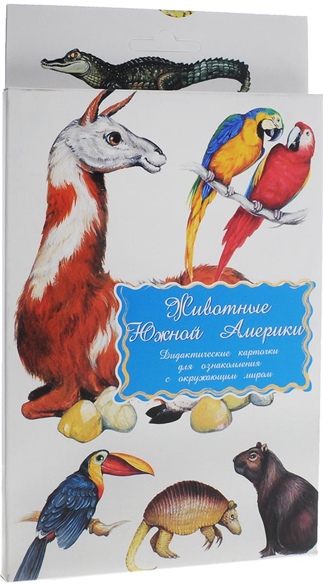 Маленький гений-Пресс Обучающие карточки Животные Южной Америки маленький гений пресс обучающие карточки головные уборы обувь