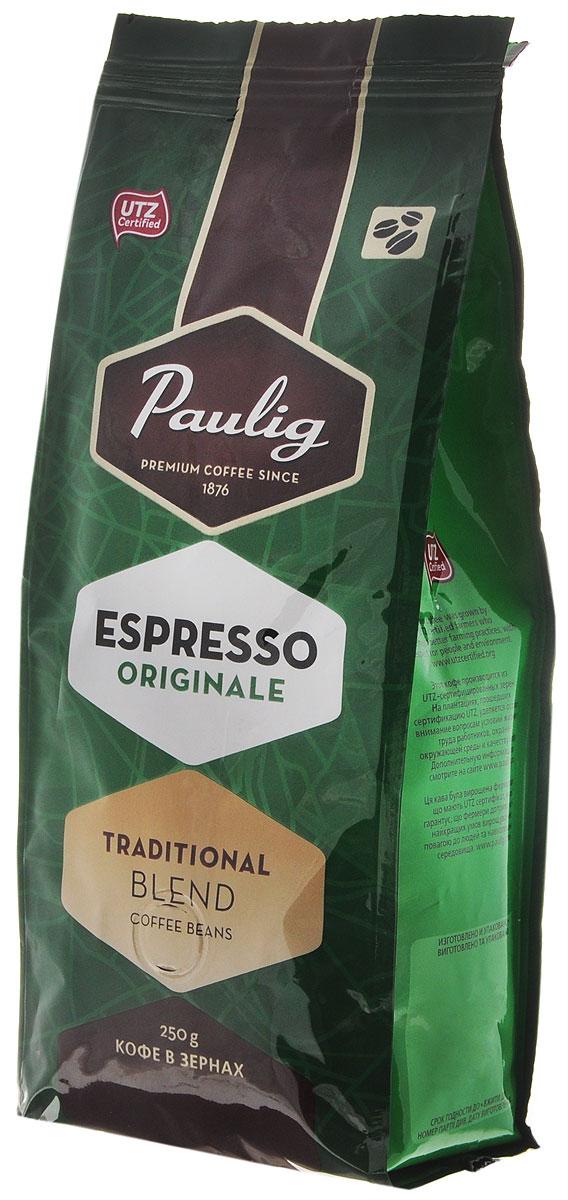 Paulig Espresso Originale кофе в зернах, 250 г0782-06Кофе в зернах Paulig Espresso Originale - это высококачественный кофе итальянского типа с нежным и в тоже время крепким вкусом для приготовления эспрессо. Изготовлен из сладких бразильских и отборных центрально американских сортов. Эспрессо имеет повышенную плотность и насыщенность.