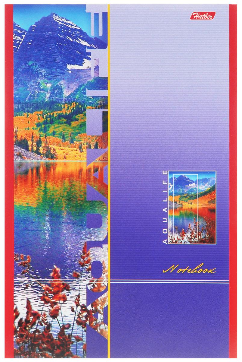 Hatber Блокнот Aqualife 80 листов в клетку72523WDБлокнот Hatber Aqualife - незаменимый атрибут современного человека, необходимый для рабочих и повседневных записей в офисе и дома.Обложка выполнена из картона и оформлена изображением горного пейзажа. Внутренний блок состоит из 80 листов белой бумаги. Стандартная линовка в голубую клетку без полей. Листы блокнота соединены двумя металлическими скрепками.