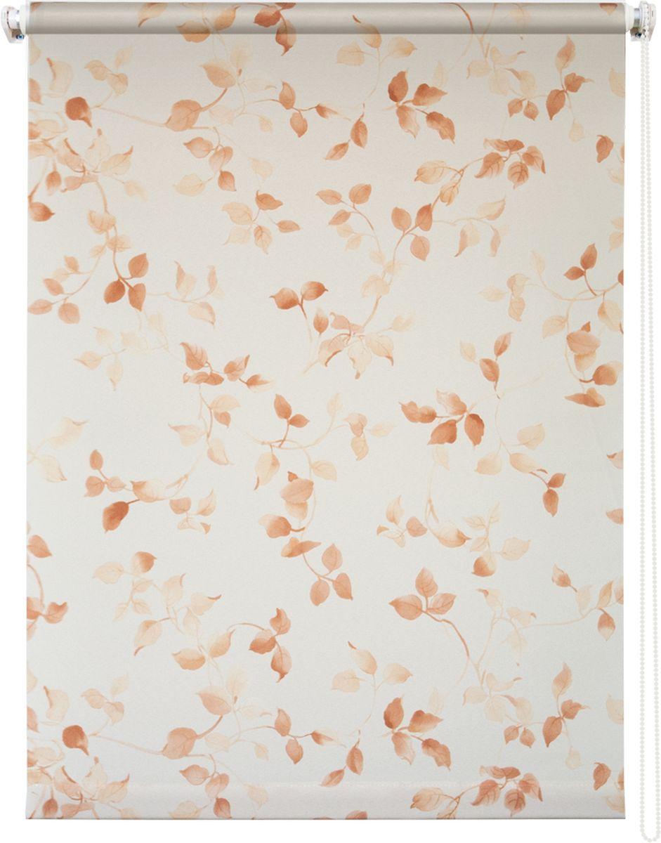 Штора рулонная Уют Березка, цвет: белый, коричневый, 50 х 175 см62.РШТО.8983.050х175Штора рулонная Уют Березка выполнена из прочного полиэстера с обработкой специальным составом, отталкивающим пыль. Ткань не выцветает, обладает отличной цветоустойчивостью и светонепроницаемостью.Штора закрывает не весь оконный проем, а непосредственно само стекло и может фиксироваться в любом положении. Она быстро убирается и надежно защищает от посторонних взглядов. Компактность помогает сэкономить пространство. Универсальная конструкция позволяет крепить штору на раму без сверления, также можно монтировать на стену, потолок, створки, в проем, ниши, на деревянные или пластиковые рамы. В комплект входят регулируемые установочные кронштейны и набор для боковой фиксации шторы. Возможна установка с управлением цепочкой как справа, так и слева. Изделие при желании можно самостоятельно уменьшить. Такая штора станет прекрасным элементом декора окна и гармонично впишется в интерьер любого помещения.