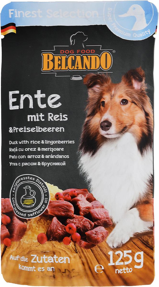 Консервы для собак Belcando, с уткой, рисом и брусникой, 125 г. 4335243352_новый дизайнКонсервы для собак Belcando - это великолепная рецептура в практичной индивидуальной порции. Корм подходит также для собак, склонных к аллергии.Товар сертифицирован.