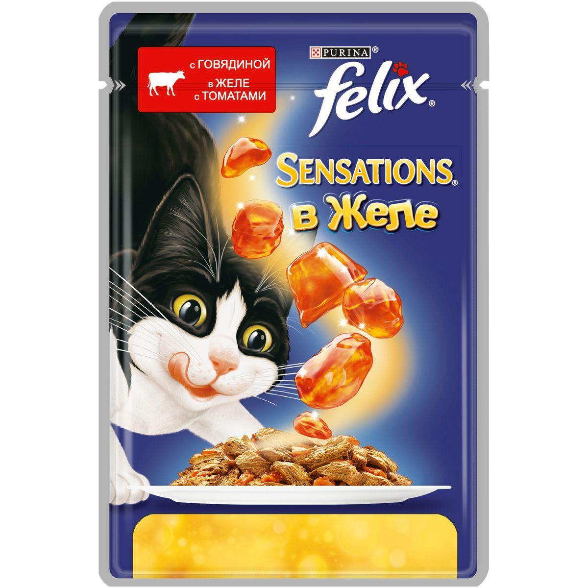Консервы для кошек Felix Sensations, с говядиной в желе с томатами, 85 г12232833Консервированный корм для кошек Felix с говядиной в желе с томатами - полнорационный корм для взрослых кошек. Это нежные кусочки с мясом или рыбой, покрытые сочным желе с разными вкусами: томатов, моркови, шпината. Ароматные желе делают вкус корма особенно аппетитным и привлекательным для вашего питомца. Ваш кот будет есть такую вкуснятину хоть каждый день - на завтрак, обед и ужин. Состав: говядина: мясо и мясные субпродукты (из которых 4% говядины), растительные белковые экстракты, рыба и рыбные субпродукты, растительные субпродукты (4% томата в желе), минеральные вещества, сахар. Пищевые добавки: витамин A (1490 МЕ/кг), витамин D3 (230 МЕ/кг), витамин E (17 МЕ/кг), железо (10 мг/кг), йод (0,3 мг/кг), медь (0,9 мг/кг), марганец (2 мг/кг), цинк (10 мг/кг). Технологические добавки: E499 (2650 мг/кг). Аналитические составные части: влажность (80%), белки (13%), содержание жира (3%), сырая зола (2,2%), сырая клетчатка (0,5%), линолевая кислота (0,2%).Товар сертифицирован.