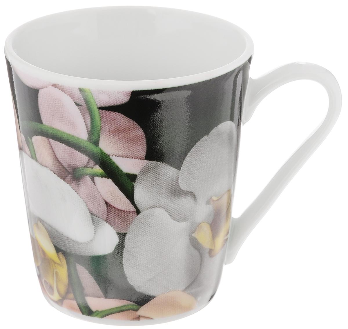 Кружка Классик. Орхидея, цвет: зеленый, серый, 300 мл68/5/4Кружка Классик. Орхидея изготовлена из высококачественного фарфора. Изделие оформлено красочным цветочным рисунком и покрыто превосходной глазурью. Изысканная кружка прекрасно оформит стол к чаепитию и станет его неизменным атрибутом.Диаметр кружки (по верхнему краю): 8,5 см.Высота стенок: 9,5 см.