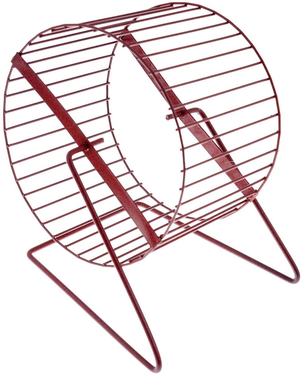 Колесо для грызунов ЗооМарк, цвет: красный, диаметр 16 см0120710Колесо для грызунов ЗооМарк, выполненное изпрочного металла, очень удобное и бесшумное.Поместив его в клетку, вы обеспечите своему питомцунеобходимую физическую активность.Предназначено для хомяков имышей. Диаметр колеса: 16 см.Высота колеса: 18 см.