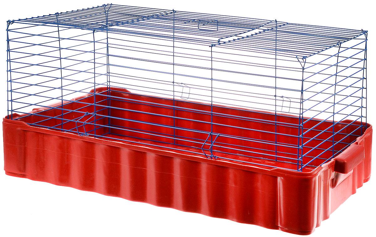Клетка для кролика ЗооМарк, цвет: красный поддон, синяя решетка, 79 х 47 х 48 см0120710Классическая клетка ЗооМарк со сплошным дном станет уединенным личным пространством и уютным домиком для кролика. Изделие выполнено из металла и пластика. Клетка надежно закрывается на защелки. Легко чистится. Для более удобной транспортировки клетку можно сложить.