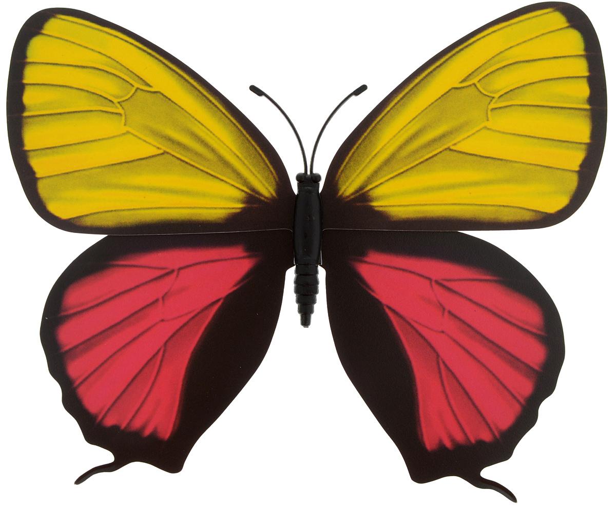 Декоративное украшение Village people Тропическая бабочка, с магнитом, цвет: черный, желтый, фуксия (14), 12 х 8 смБрелок для ключейДекоративная фигурка Village People Тропическая бабочка, изготовленная из ПВХ и магнита, это не только красивое украшение, но и замечательный способ отпугнуть птиц с грядок. Изделие выполнено в виде бабочки и оснащено магнитом, с помощью которого вы сможете поместить изделие в любом удобном для вас месте. Яркий дизайн изделия оживит ландшафтсада.