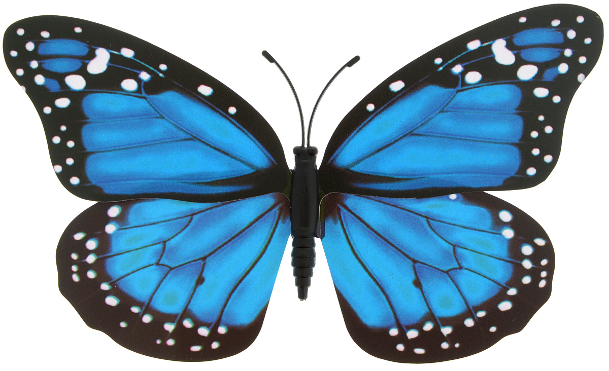 Декоративное украшение Village people Тропическая бабочка, с магнитом, цвет: черный, голубой, белый (10), 12 х 8 смБрелок для ключейДекоративная фигурка Village People Тропическая бабочка, изготовленная из ПВХ и магнита, это не только красивое украшение, но и замечательный способ отпугнуть птиц с грядок. Изделие выполнено в виде бабочки и оснащено магнитом, с помощью которого вы сможете поместить изделие в любом удобном для вас месте. Яркий дизайн изделия оживит ландшафтсада.