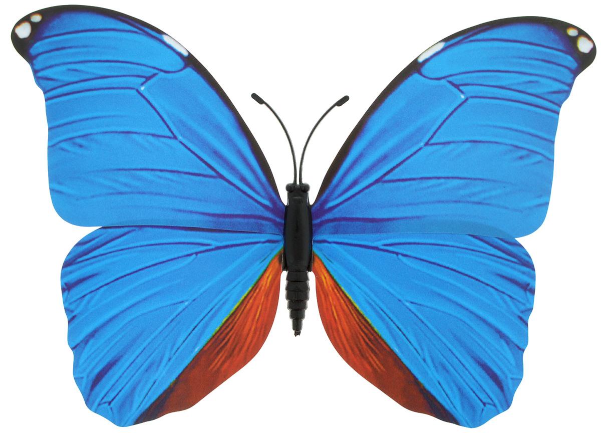 Декоративное украшение Village people Тропическая бабочка, с магнитом, цвет: голубой, коричневый (16), 12 х 8 см25051 7_желтыйДекоративная фигурка Village People Тропическая бабочка, изготовленная из ПВХ и магнита, это не только красивое украшение, но и замечательный способ отпугнуть птиц с грядок. Изделие выполнено в виде бабочки и оснащено магнитом, с помощью которого вы сможете поместить изделие в любом удобном для вас месте. Яркий дизайн изделия оживит ландшафт сада.
