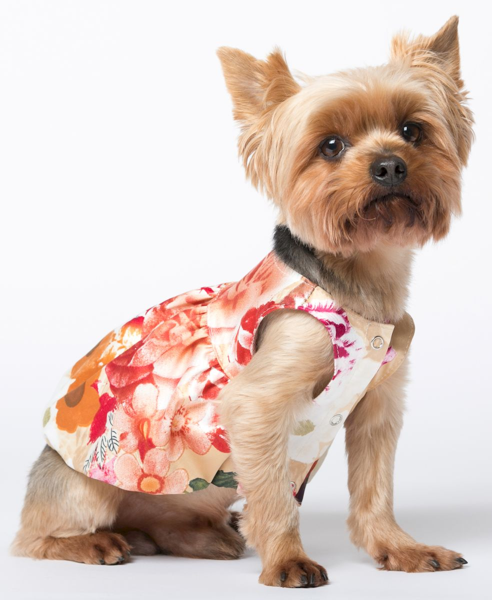 Платье для собак Yoriki Французские мотивы, для девочки. 088-2. Размер MDM-140515_бежевыйОбхват шеи: 25 см.Обхват груди: 39 см. Длина спины: 24 см.