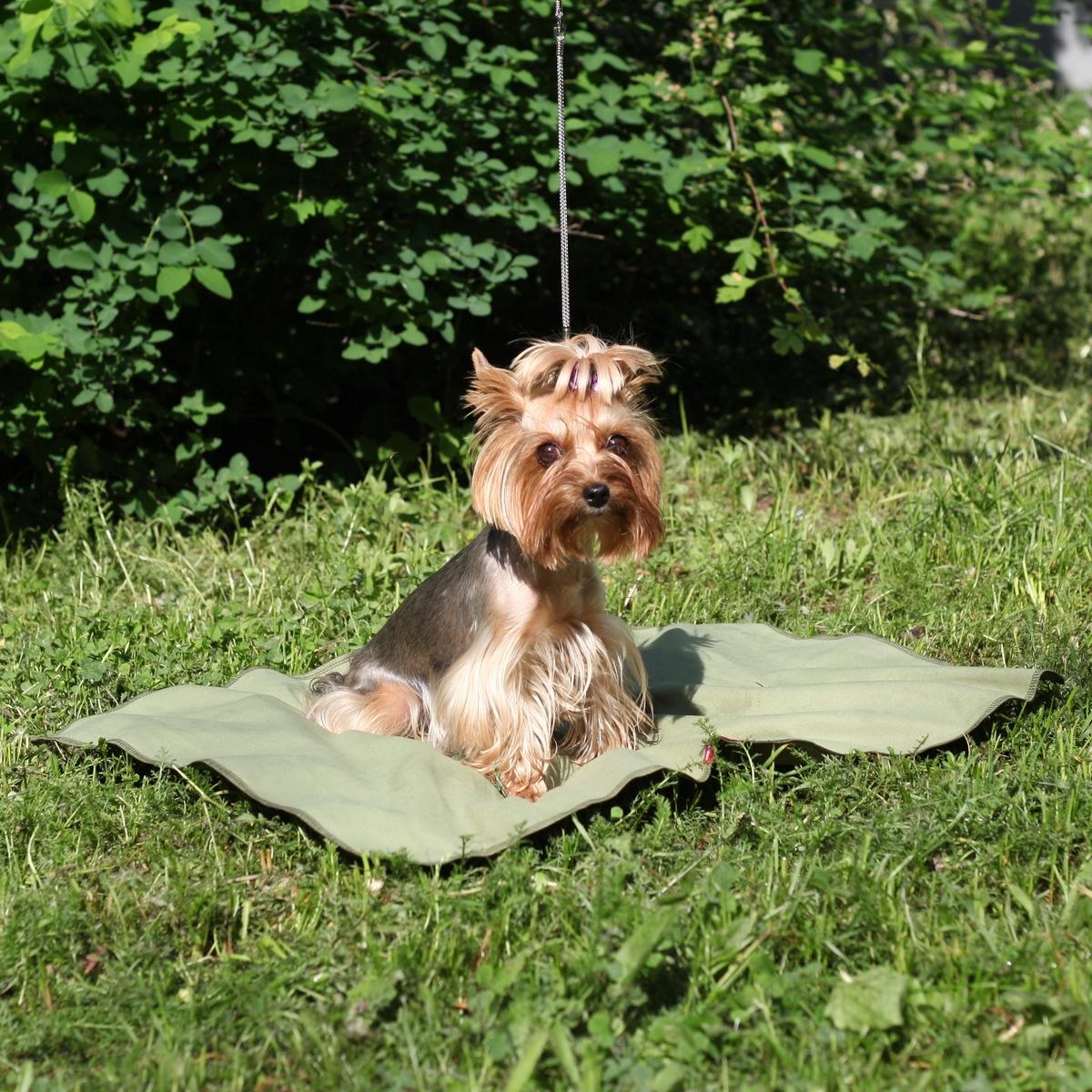 Коврик для собак Osso Fashion, охлаждающий, цвет: оливковый, 50 х 70 см0120710Охлаждающий коврик Osso Fashion из ткани ССТ (COOL COMFORT TECHNOLOGY) помогает собакам легче переносить жару, делает более комфортным их пребывание в душной квартире, в транспорте и на выставках.Охлаждающий коврик можно постелить на пол или на лежанку, где собаке будет комфортно проводить время жарким летним днем. Также его можно использовать как покрывало, которое защитит от жары и вас, и вашего питомца. Охлаждающее изделие Osso Fashion сшиты из инновационной ткани ССТ (COOL COMFORT TECHNOLOGY), которая создает персональную зону охлаждения и обеспечивает комфортную терморегуляцию на длительное время. Охлаждение ткани обеспечивается за счет уникальной структуры переплетения волокон, создающих капиллярные сети повышенной плотности. Серебросодержащее волокно X-Static, входящее в состав ткани, придает ей антистатические и антимикробные свойства. Длительное использование и многократные стирки не влияют на охлаждающие свойства ткани. В отличие от охлаждающих тканей предыдущего поколения, эта ткань не имеет химической пропитки и не содержит охлаждающих гелей.При активации изделия (встряхивании) происходит максимальное охлаждение за счет испарения воды. Однако - из-за уникальной комбинации волокон и их взаимодействия между собой - испарение и потеря влаги происходит медленно, поскольку одновременно идет мощное впитывание паров и водоотведение.Чтобы активировать охлаждающее действие изделия его нужно намочить, отжать и встряхнуть. Подходит вода из любого источника: из-под крана, дождевая, речная, морская, влага от потоотделения - они реактивируют охлаждающую функцию снова и снова.Охлаждающая подстилка для собак Osso Fashion подходит для маленьких, больших и средних собак.Размер коврика: 50 х 70 см.