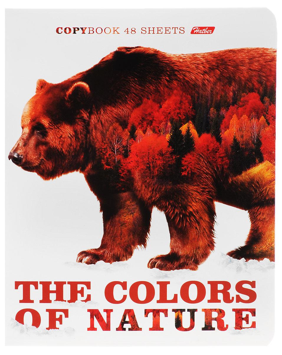 Hatber Тетрадь Медведь 48 листов в клетку48Т5вмВ1_14837Тетрадь Hatber Медведь отлично подойдет для занятий школьнику, студенту или для различных записей.Обложка, выполненная из плотного картона, позволит сохранить тетрадь в аккуратном состоянии на протяжении всего времени использования. Лицевая сторона оформлена изображением бурого медведя и осеннего леса. Внутренний блок тетради, соединенный двумя металлическими скрепками, состоит из 48 листов белой бумаги. Стандартная линовка в клетку голубого цвета дополнена полями, совпадающими с лицевой и оборотной стороны листа.
