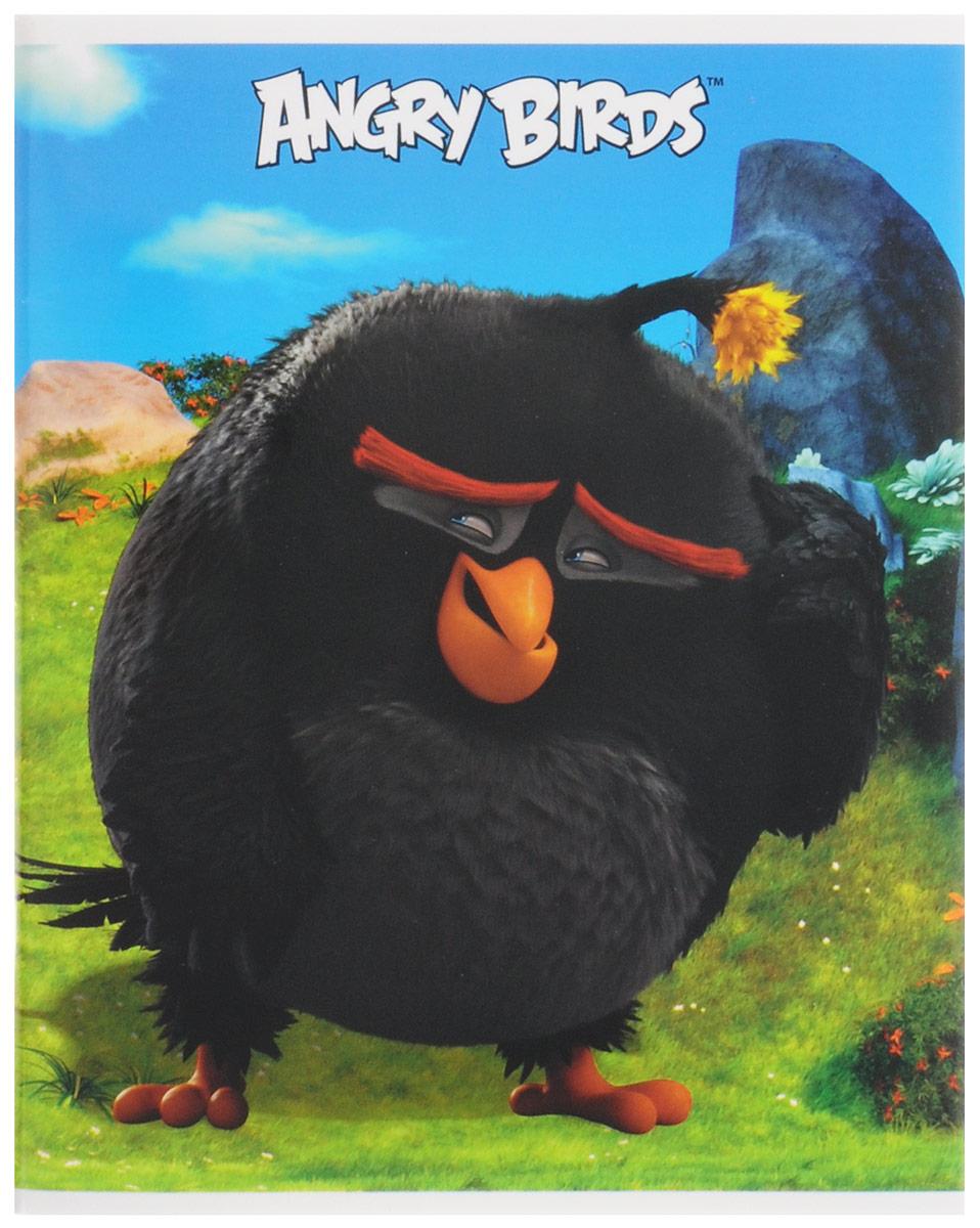 Hatber Тетрадь Бомб 48 листов в клетку48Т5В1_15019Тетрадь Hatber Бомб отлично подойдет для занятий школьнику, студенту, а также для различных записей.Обложка, выполненная из плотного картона, позволит сохранить тетрадь в аккуратном состоянии на протяжении всего времени использования. Обложка оформлена изображением птицы Бомб из известной игры Angry Birds. Внутренний блок тетради, соединенный двумя металлическими скрепками, состоит из 48 листов белой бумаги. Стандартная линовка в клетку голубого цвета дополнена полями, совпадающими с лицевой и оборотной стороны листа. В верхнем углу каждой странички находится разделенное точками место для даты, в нижнем - пустые квадратики для номеров страниц.