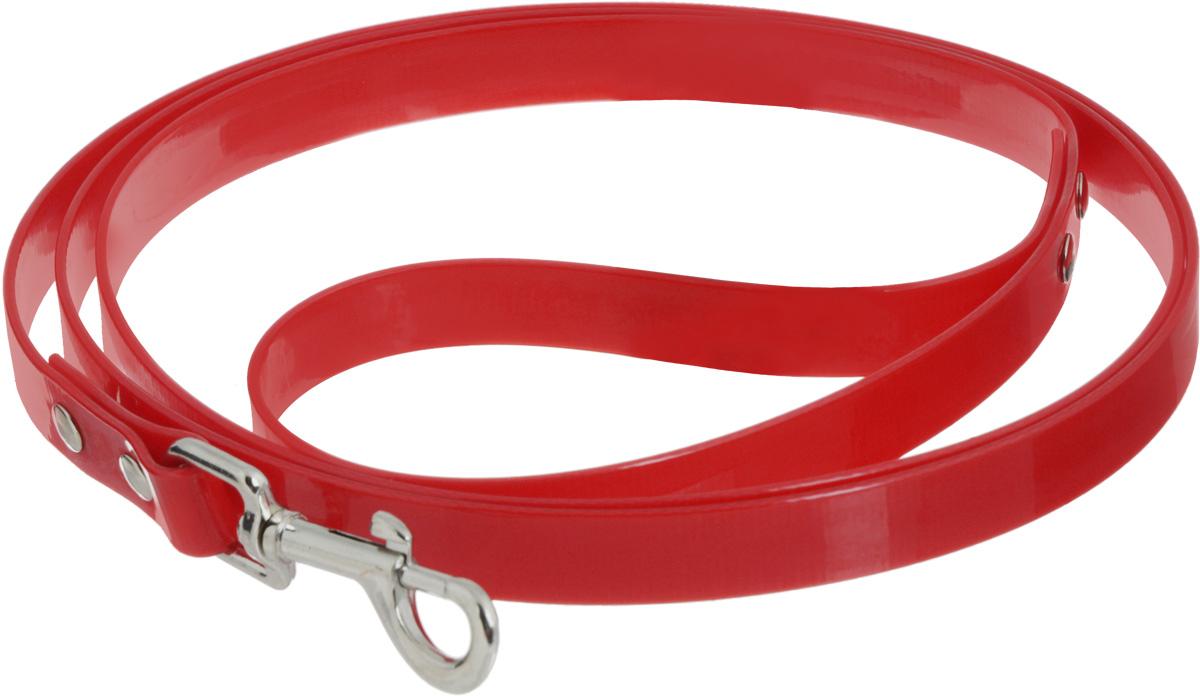 Поводок для собак Каскад Синтетик, цвет: красный, ширина 2 см, длина 2 м02620201-05Поводок для собак Каскад Синтетик изготовлен извысокотехнологичного биотана (нейлон, термопластичный полиуретан) и снабжен металлическим карабином. Поводок отличается не только исключительной надежностью и удобством, но и ярким дизайном. Он идеально подойдет для активных собак, для прогулок на природе и охоты. Поводок - необходимый аксессуар для собаки. Ведь в опасных ситуациях именно он способен спасти жизнь вашему любимому питомцу. Длина поводка: 2 м.Ширина поводка: 2 см.