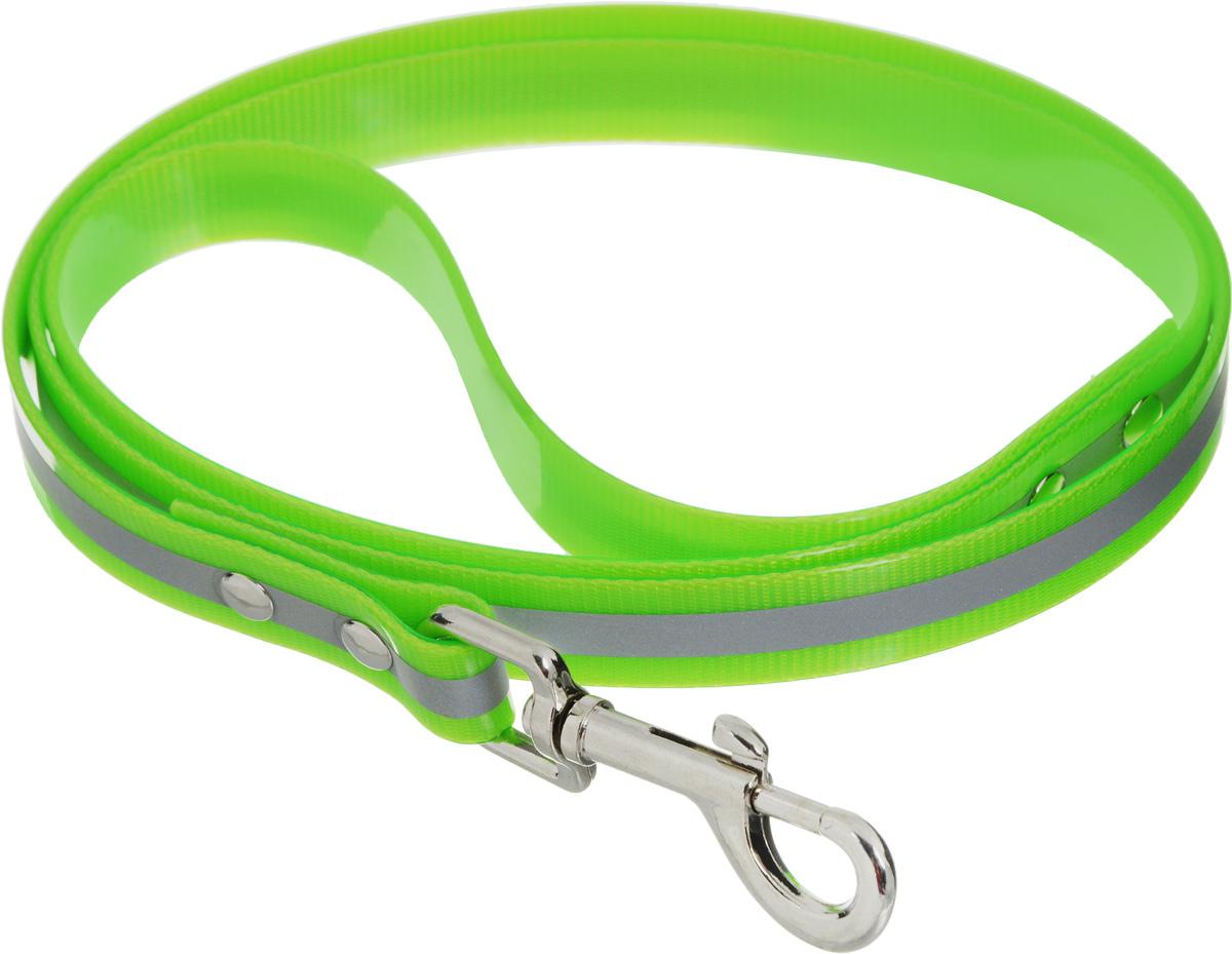 Поводок для собак Каскад Синтетик, со светоотражающей полосой, цвет: салатовый, ширина 2 см, длина 1,2 м2125012Поводок для собак Каскад Синтетик изготовлен извысокотехнологичного биотана (нейлон, термопластичный полиуретан) и снабжен металлическим карабином. Изделие имеет светоотражающую полоску. Поводок отличается не только исключительной надежностью и удобством, но и ярким дизайном. Он идеально подойдет для активных собак, для прогулок на природе и охоты в темное время суток. Поводок - необходимый аксессуар для собаки. Ведь в опасных ситуациях именно он способен спасти жизнь вашему любимому питомцу. Длина поводка: 1,2 м.Ширина поводка: 2 см.