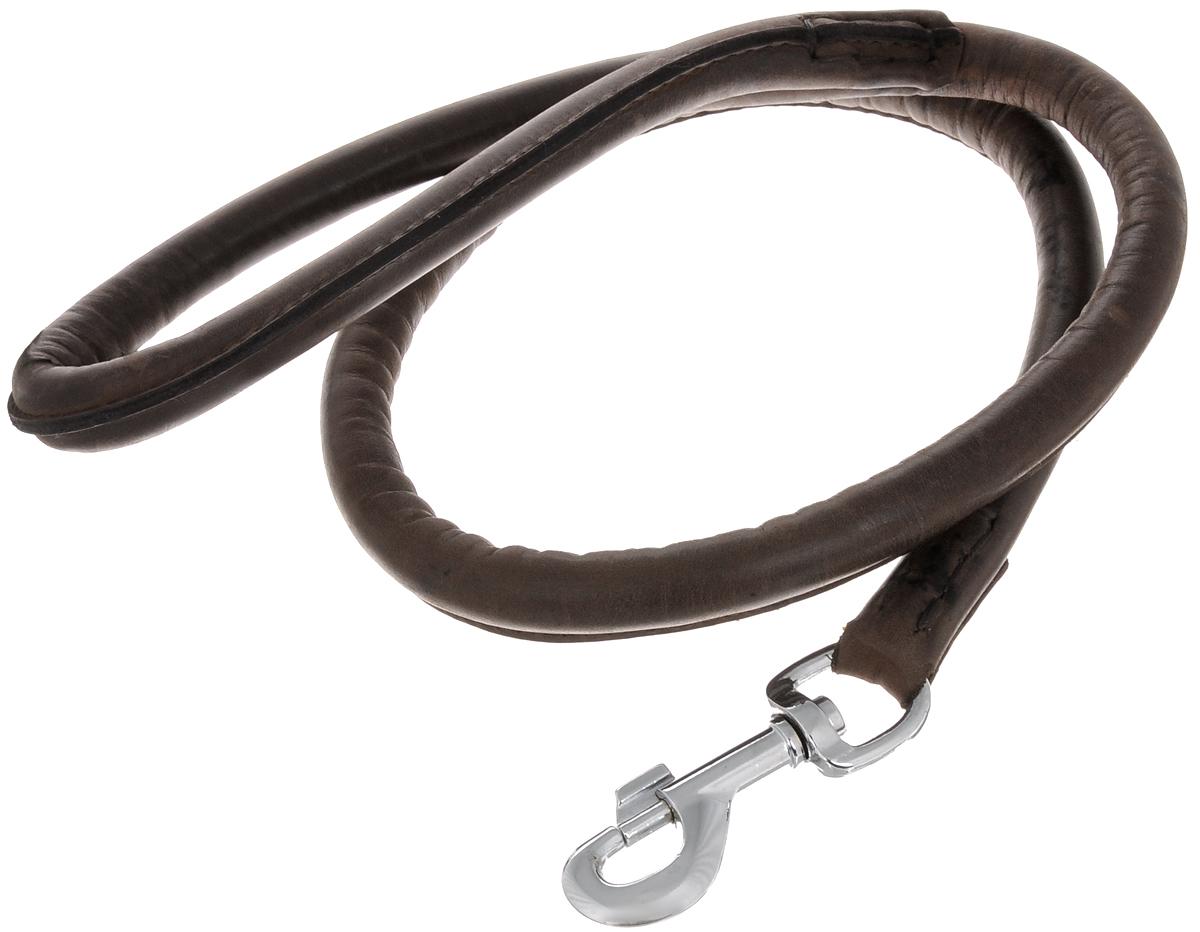 Поводок для собак Каскад Элита, ширина 1,4 см, длина 1 м0120710Поводок для собак Каскад Элита изготовлен из кожи и снабжен металлическим карабином. Поводок отличается не только исключительной надежностью и удобством, но и ярким дизайном. Он идеально подойдет для активных собак, для прогулок на природе и охоты. Поводок - необходимый аксессуар для собаки. Ведь в опасных ситуациях именно он способен спасти жизнь вашему любимому питомцу. Длина поводка: 1 м.Ширина поводка: 1,4 см.