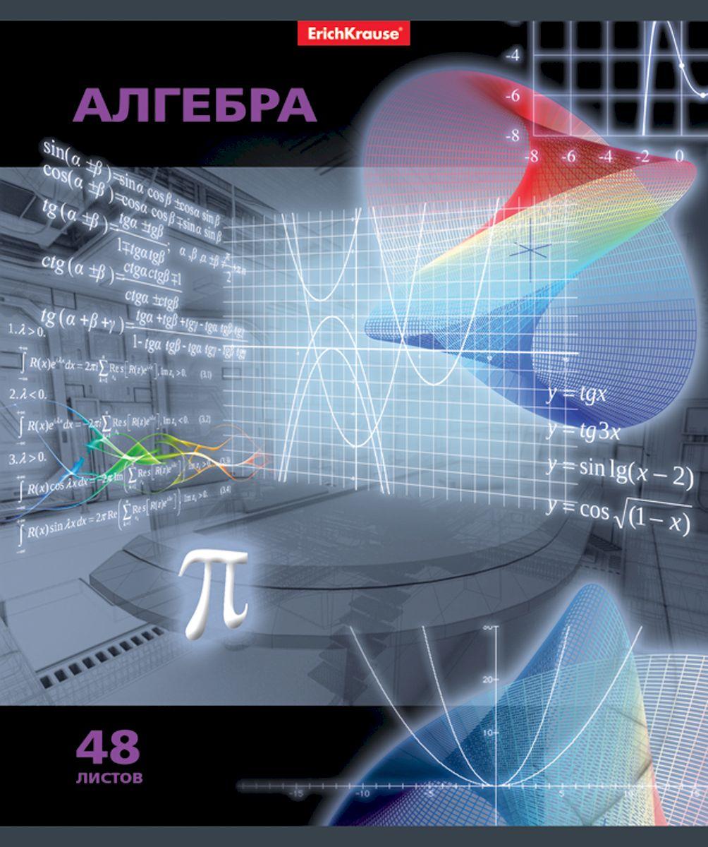 Erich Krause Тетрадь Videoterminal Алгебра 48 листов в клетку72523WDТетрадь 48 листов. Обложка: картон мелованный 170 г/м2 Блок:бумага офсетная 60г/м2 .