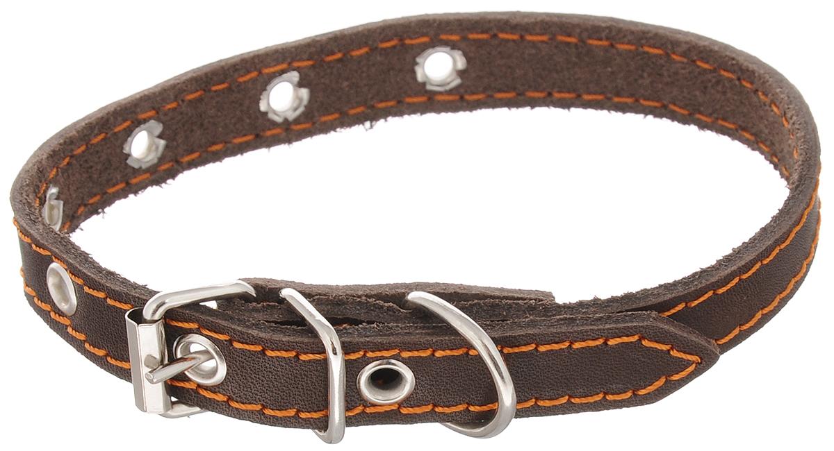 """Ошейник для щенков Каскад """"Классика"""", цвет: темно-коричневый, ширина 1,5 см, обхват шеи 24-30 см"""