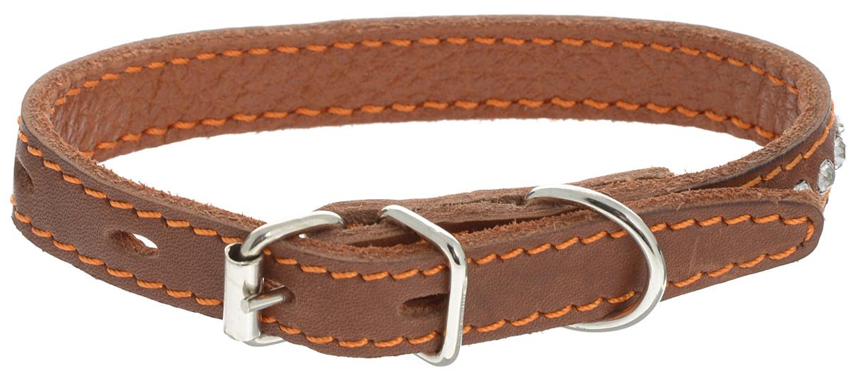 """Ошейник для собак Каскад """"Классика"""", двойной, цвет: коричневый, ширина 1,5 см, обхват шеи 21-27 см"""