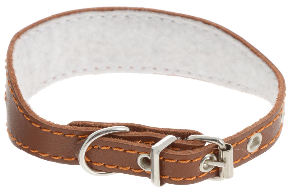 """Ошейник для собак Каскад """"Классика"""", цвет: коричневый, ширина 3 см, обхват шеи 25-32 см. 00000036к"""