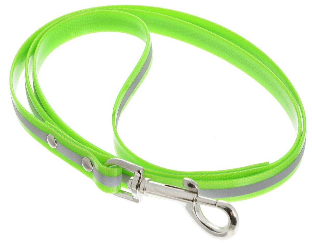 Поводок для собак Каскад Синтетик, со светоотражающей полосой, цвет: салатовый, серебристый, ширина 1,5 см, длина 1,2 мHB14DПоводок для собак Каскад Синтетик, изготовленный из высокотехнологичного биотана (нейлон, термопластичный полиуретан), снабжен металлическим карабином. Изделие имеет светоотражающую полоску. Поводок отличается не только исключительной надежностью и удобством, но и ярким дизайном. Он идеально подойдет для активных собак, для прогулок на природе и охоты в темное время суток. Поводок - необходимый аксессуар для собаки. Ведь в опасных ситуациях именно он способен спасти жизнь вашему любимому питомцу. Длина поводка: 1,2 м.Ширина поводка: 1,5 см.