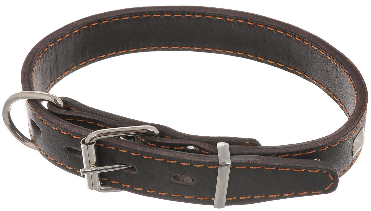 """Ошейник для собак Каскад """"Классика"""", цвет: темно-коричневый, ширина 2,5 см, обхват шеи 39-46 см. 00025061к"""