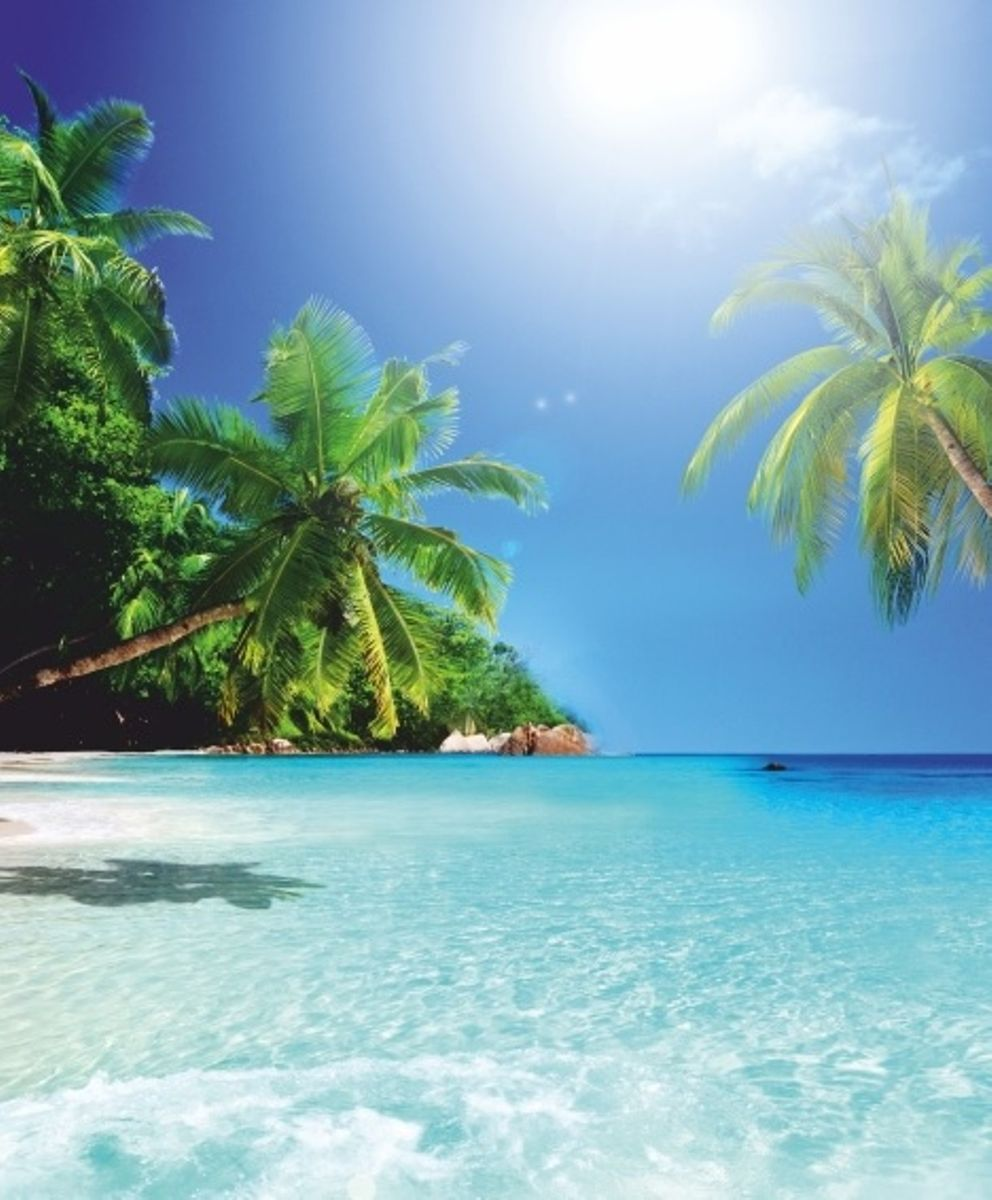 Штора для ванной комнаты Vanstore Райский остров, 180 х 180 см68/5/4Штора Vanstore Райский остров выполнена из полиэстера и оформлена красочным изображением моря, пляжа и пальм. Она надежно защитит от брызг и капель пространство вашей ванной комнаты в то время, пока вы принимаете душ. В верхней кромке шторы предусмотрены отверстия для пластиковых колец (входят в комплект).Привлекательный дизайн шторы наполнит вашу ванную комнату положительной энергией. Количество колец: 12 шт.Плотность: 100 г/м2.