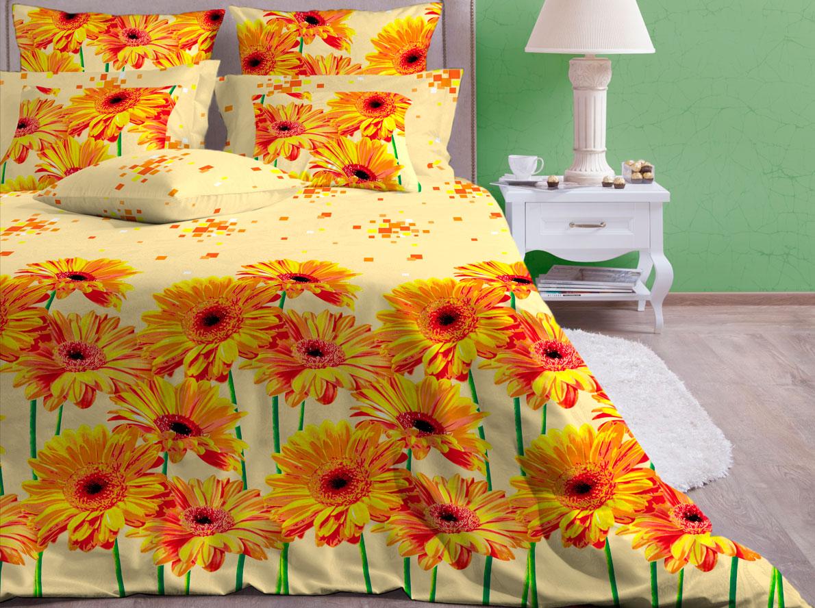 Комплект белья Хлопковый Край Герберы, 1,5-спальный, наволочки 70х70391602Комплект постельного белья выполнен из качественной бязи и украшен оригинальным рисунком. Комплект состоит из пододеяльника, простыни и двух наволочек.Бязь представляет из себя хлопчатобумажную матовую ткань (не блестит). Главные отличия переплетения: оно плотное, нити толстые и частые. Из-за этого материал очень прочный и практичный.Постельное белье Хлопковый Край экологичное, гипоаллергенное, оно легко стирается и гладится, не сильно мнется и выдерживает очень много стирок, при этом сохраняя яркость цвета и рисунка.