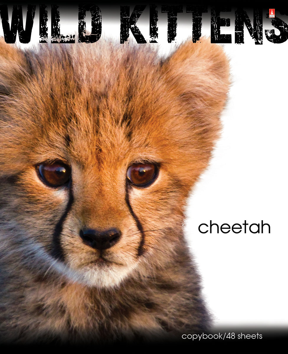 Альт Тетрадь Cheetah 48 листов в клетку96Т5В1гр_Версаль (Франция)Тетрадь Альт Cheetah подойдет студенту и школьнику.Любимы и популярны у школьников всех возрастов яркие тетради с представителями живой природы. Новая серия тетрадей посвящена хищным животным из семейства кошачьих - опасным и одновременно прекрасным. Красочная обложка тетради с закругленными углами выполнена из картона и дополнена изображением гепарда.Внутренний блок тетради состоит из 48 листов белой бумаги, соединенных двумя металлическими скрепками. Стандартная линовка в клетку голубого цвета дополнена полями.